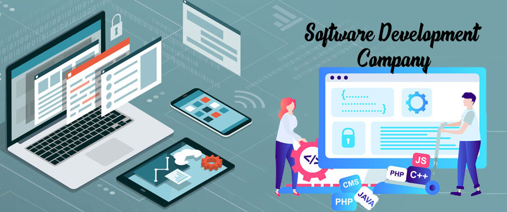 Importance of Software Development in Business