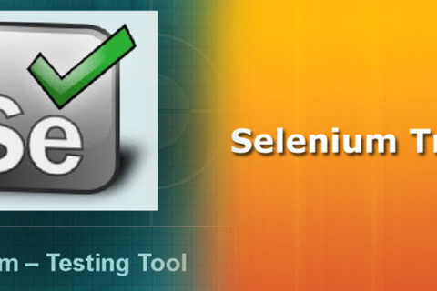 advantage selenium training