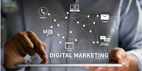 Techniques to Enhance Growth of your Pest Control Business with Digital Marketing