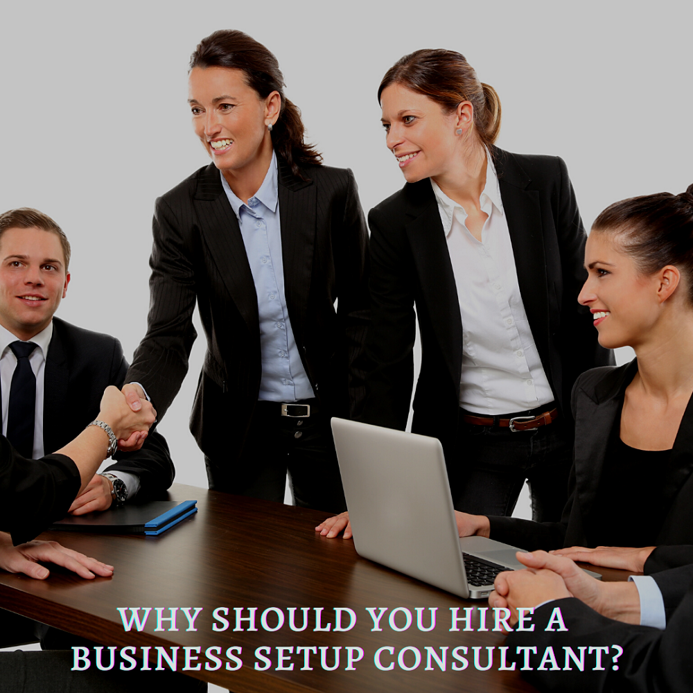 Why Should you Hire a Business Setup Consultant?